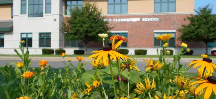 School with flowers